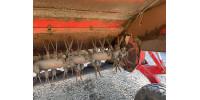 Косилка прицепная Kverneland Taarup 4032 с кондиционером № 909